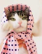 草莓牛奶手布巾