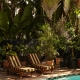 Freehand Miami Hostel 有著棕櫚樹與泳池的美妙寬敞空間。