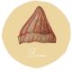 TUESDAY : 反折毛線帽(beanie)