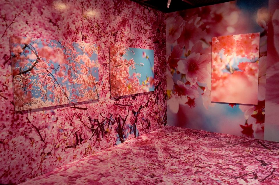 ©mika ninagawa Courtesy of Tomio Koyama Gallery
