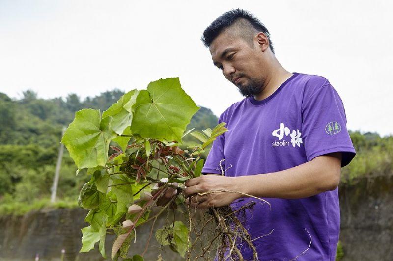 部落營造員徐大駿的心願,是在日光小林重新種植傳統原生植物,讓部落下一代也能認識並學習以前小林山上的一切,不致文化斷根。