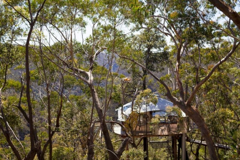 3.Treehouse Blue Mountains,最少預訂2晚,NT24,093/晚