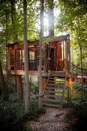 2.Secluded Intown Treehouse,最少預訂2晚,NT11,552/晚