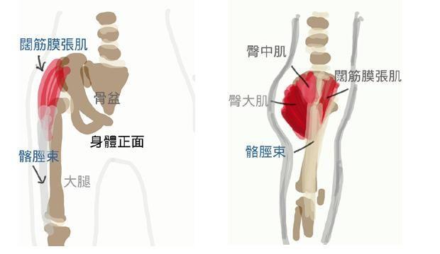 放鬆闊筋膜張肌與髂脛束闊筋膜張肌(TFL)與髂脛束(IT Band)過度緊繃的人,走路可能會呈現外八(腳一直被往外側拉),當然跟久坐生活型態大有關聯!