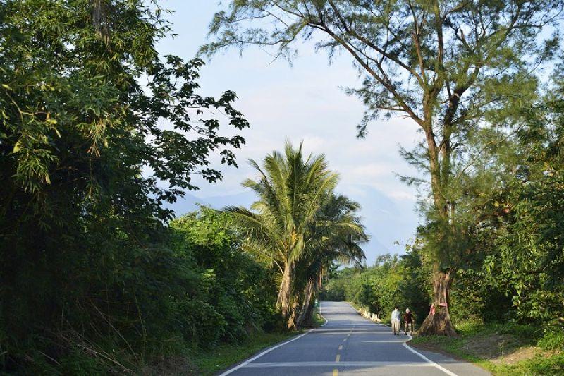 幾年前中風的阿姨,每天沿著小路散步復健,和路上的樹說說話,聽鳥唱歌,一天能走上來回2公里。
