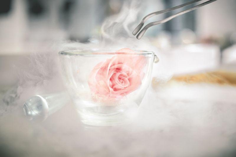 冷壓法瞬間冷凍岡維拉玫瑰,完美保存珍稀活性成分。