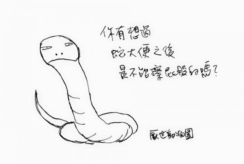 (圖片來源/厭世動物園FB)