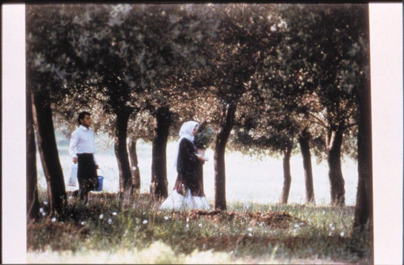 《橄欖樹下的情人》(Through the Olive Trees, 1994)