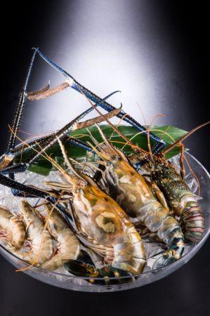 左-明蝦, 中-OMG斯里蘭卡蝦, 右-澎湖活龍蝦