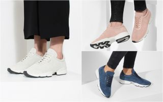 Velocity Sneaker