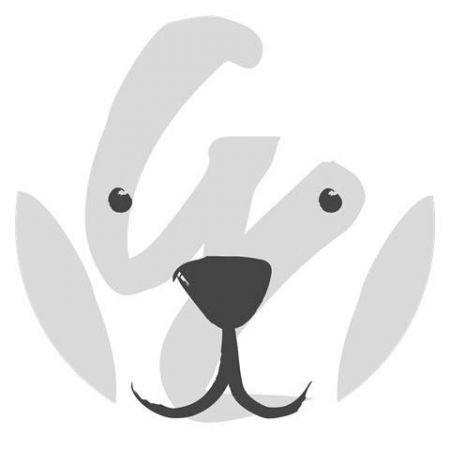 拉法葉百貨臉書大頭貼改為可愛北極熊