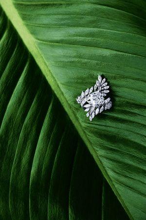 嘉賓法國女星茱莉葉畢諾許穿戴伯爵珠寶