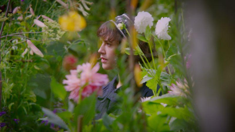 《歡迎光臨貝拉的奇幻花園》(This Beautiful Fantastic)