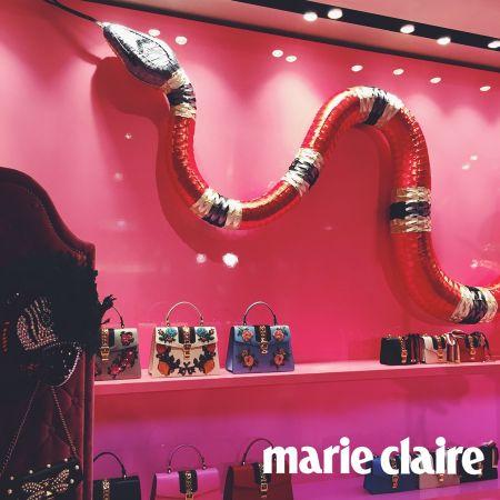 在歐洲文化當中,蛇具有許多象徵意義,其中包含了智慧的象徵。英國伊莉莎白女王在加冕後的第一次會議上戴上蛇形手鐲,期許自己依憑智慧治國。蛇的應用對Alessandro Michele而言也是一種對英國文化的嚮往。