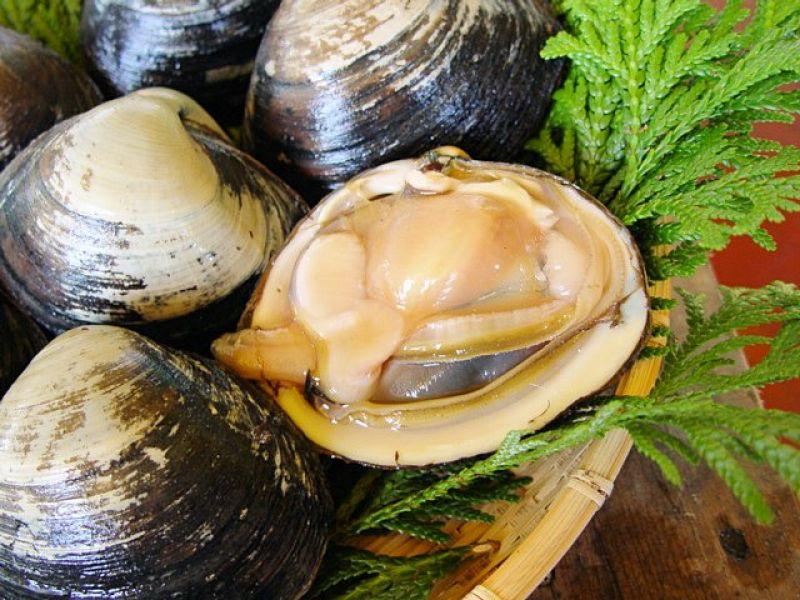 北寄貝-賞味期間:12月中旬~隔年6月日本冬天海鮮當中,最當季的貝類就是北寄貝(ほっき貝)。北寄貝營養成分相當高,所以也被稱呼為「貝中之王」。北寄貝最常見吃法是當作握壽司的配料,所以去壽司店的話一定看到北寄貝的握壽司。但是在宮城縣南,最道地、最能享受北寄貝美味的吃法是「北寄貝丼」。將大量鮮紅而且帶有一點海水香味的北寄貝鋪在飯特製的飯上的北寄貝丼,每吃一口都會享受那柔軟又帶有獨特的甜味的北寄貝,這是有別於一般海鮮丼不同的美味。