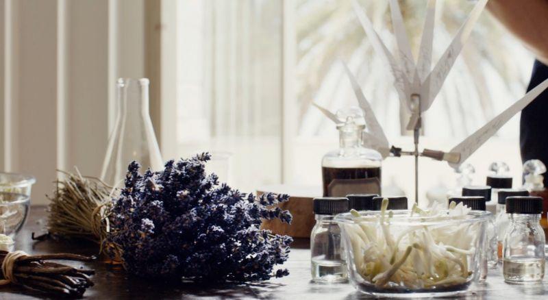 我的印記淡香精使用的薰衣草採用南法普羅旺斯德龍省有機農場 Baume des Anges 摘種的卡拉薰衣草,精萃出的薰衣草氣味輕柔、細緻,帶著果香氣息。