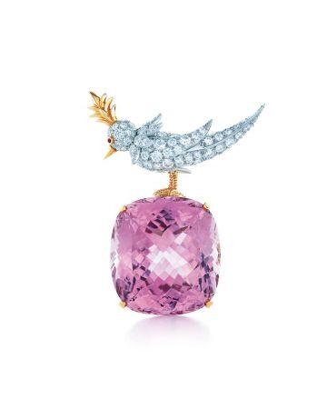 石上鳥孔賽石和鑽石胸針,Tiffany & Co.
