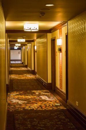 酒店走廊充滿褐色調,地毯燈具皆呼應探險主題