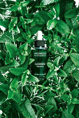 精油覺醒課程中使用的八輪芳香精油