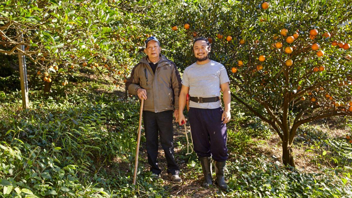 【返鄉夢想家】橘 Sir'S 友善農法的美好橘子園