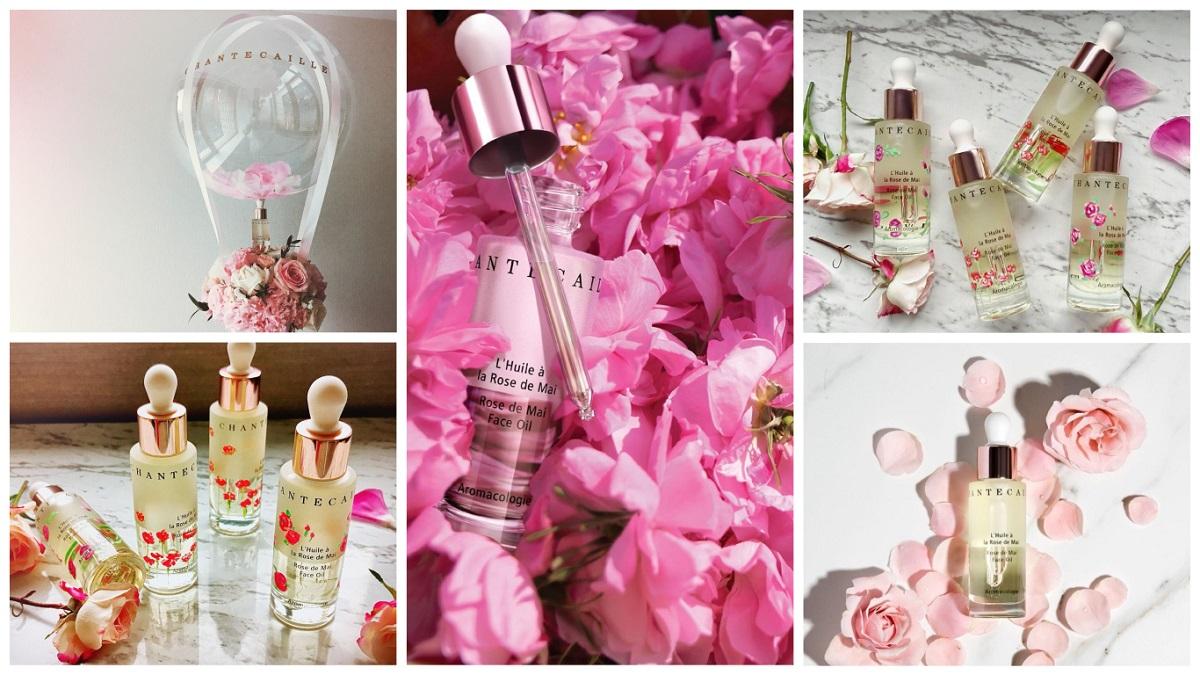 就是這一罐!零負評神級美容油~香緹卡「五月玫瑰花妍極粹精華油」推出限量手繪瓶身