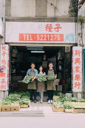 新興農藥種子店