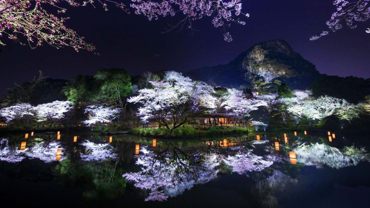 走進充滿禪意的夜世界!teamLab打造,日本九州「御船山樂園光之祭」,美不勝收的視覺體驗!