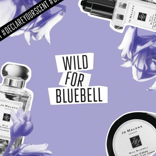 Jo Malone London DECLARE YOUR SCENT 香氛宣言「嬌嫩紫- 藍風鈴」形象圖