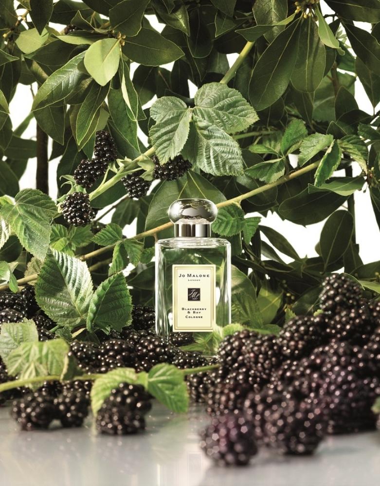 Jo Malone London黑莓子與月桂葉古龍水形象圖