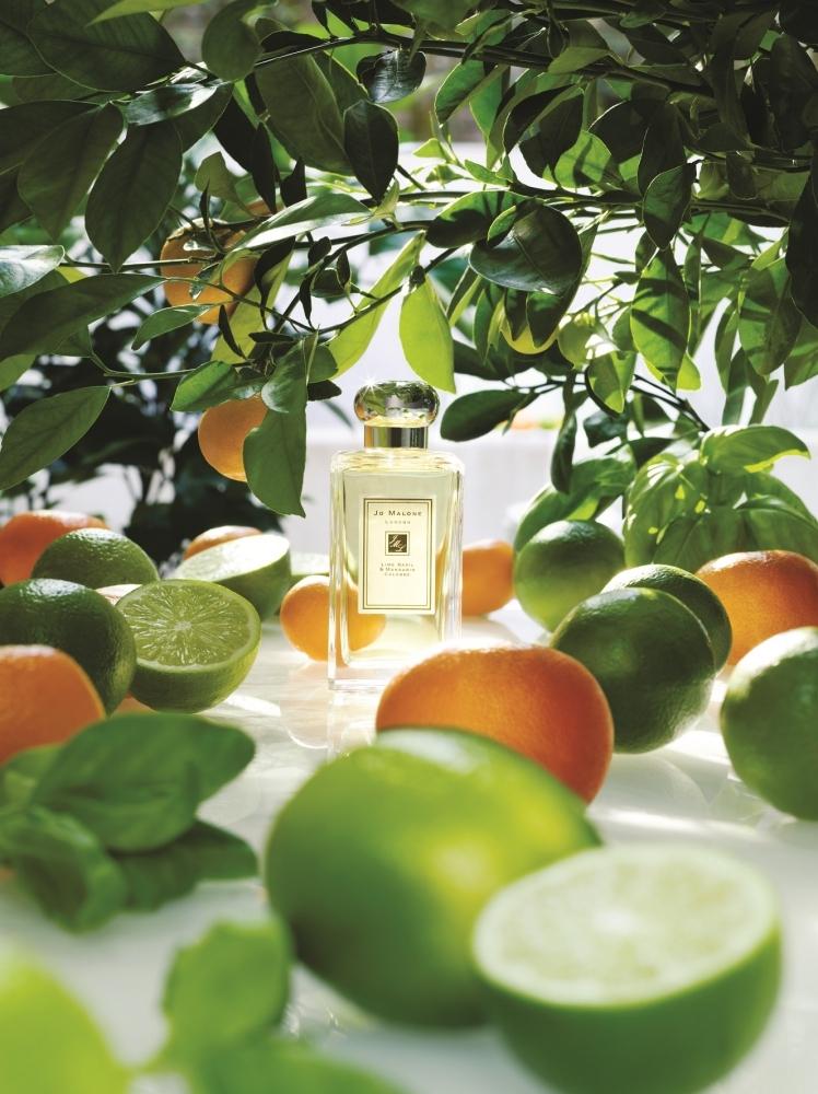 Jo Malone London青檸羅勒與柑橘古龍水形象圖