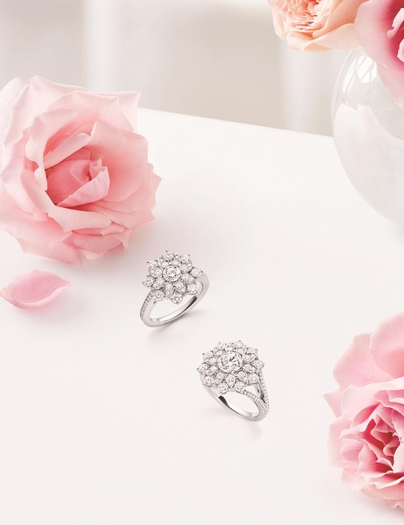 海瑞溫斯頓 芙蓉錦簇Lotus Cluster大型鑽石戒指及小型鑽石戒指