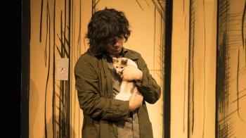 賓士貓、玳帽貓、虎斑貓…是貓奴們不能錯過的本命電影!「陪伴在你身邊的,難道不能是我嗎?」《貓是用來抱的》我的男友怎麼是隻貓