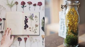 做乾燥花其實就這麼簡單!五種方法居家 DIY 乾燥花,還附上懶人作法!