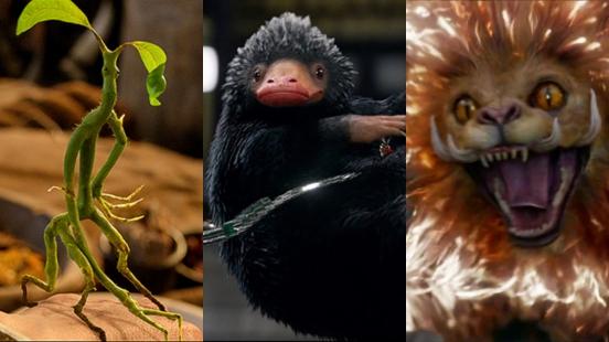 真的好想養一隻!玻璃獸、木精、中國神獸「騶吾」......《怪獸與葛林戴華德的罪行》這些可愛奇獸們你都認識嗎?